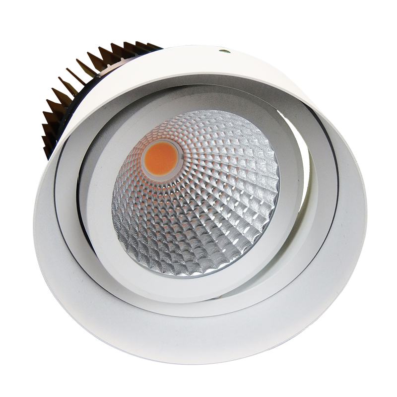 Led High Bay Melbourne: Danica Trimless LED Downlight