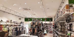 image of retail lighting for homeware store