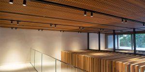Botanic Melbourne 6